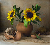 Still life with sunflowers and broken vase Stock Photography