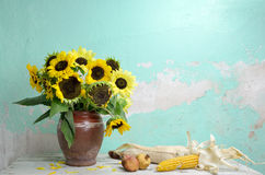 Still life with sunflowers. Clay pot with sunflowers, dried pomegranates and corns on wooden table Royalty Free Stock Image