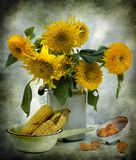 Still life with sunflowers and corn Stock Photography