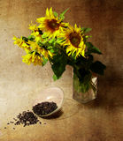 Still-life with sunflowers and seeds Stock Photography
