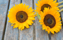 Still life with sunflowers set outside. On old garden table Royalty Free Stock Photography
