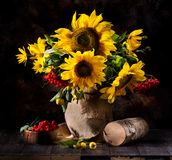 Still life with sunflowers. Yellow flowers and rowan berries in a vase Royalty Free Stock Image