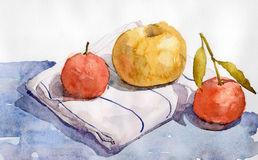 Still life with tangerines and apple. Still life with a white cloth striped two tangerines an apple placed on a blue plane. made with watercolor Stock Photography