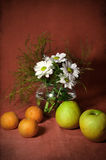 Still life with tangerines and apples Stock Images