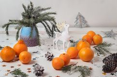 Still life with tangerines and its you branches in a vase Royalty Free Stock Photos