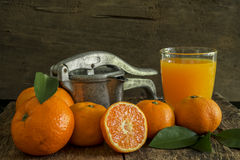 Still life tangerines and juicer Stock Photography