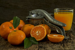 Still life tangerines and juicer. Still Life orange patterned on old wood and antique juicer Royalty Free Stock Images