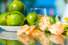Still life with tangerines. Outdoors Royalty Free Stock Photos
