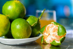 Still life with tangerines Stock Photography