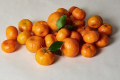 Still life with tangerines on white royalty free stock image