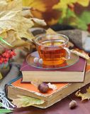Still life with tea, books and leaves in autumn Royalty Free Stock Photo