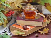 Still life with tea, books and leaves in autumn Royalty Free Stock Image
