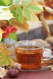 Still life with tea, books and leaves in autumn Royalty Free Stock Photography