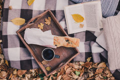 Still life with tea, french loaf, knitted pillows and book Stock Photography
