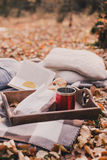 Still life with tea, french loaf, knitted pillows and book Royalty Free Stock Photos