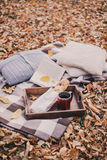 Still life with tea, french loaf, knitted pillows and book Royalty Free Stock Images