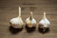 Still life with three heads of garlic Stock Image