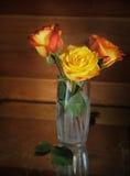 Still life with three roses Stock Photo