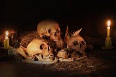 Still life with three skulls, dry fruit and hay. Still life painting photography with three skulls, dry fruit and hay, dark concept stock image