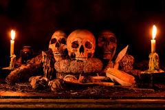 Still life with three skulls, dry fruit and hay. Still life painting photography with three skulls, dry fruit and hay, dark concept royalty free stock photography