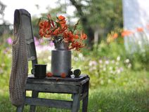 Still life with tiger lilies on a chair Royalty Free Stock Photos