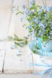 Still life with tiny spring flowers in a blue cup royalty free stock image