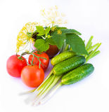 Still-life from a tomato, a cucumber, and onions w. Ith a flower and green leaves Royalty Free Stock Photos