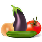 Still life with tomato onion cucumber eggplant Stock Image