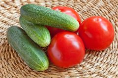 Still-life of Tomatoes and Cucumbers Stock Images