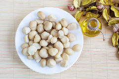 Still life with top view Macadamia nuts in the plate and bottle of oil Royalty Free Stock Photography