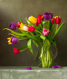 Still life with tulips. Still life with colorful tulips Stock Photo