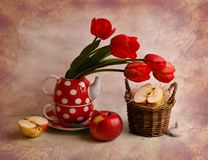 still life with tulips and apples Royalty Free Stock Image