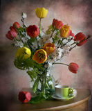 Still life with tulips and branches apricots Stock Photography