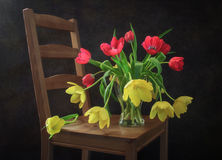 Still Life Tulips on a chair. Still life with red and yellow tulips in a vase on a chair stock image
