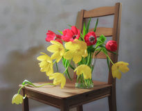 Still Life Tulips on a chair. Still life with red and yellow tulips in a vase on a chair stock images