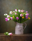 Still life with tulips Royalty Free Stock Image