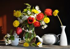 Still life with tulips and dandelions Stock Photography
