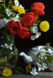 Still life with tulips and dandelions Royalty Free Stock Photography