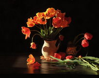 Still life with tulips Stock Photography