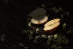 Still Life two Half apple rot Stock Photography