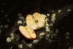 Still Life two Half apple rot stock photo