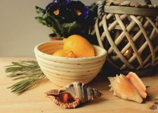 Still life - two lemons in a basket, two sea shells and basket lamp. Arranged on a table Stock Photography