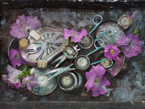 Still life with two long metallic silver scissors, dials of different sizes and colors, and pink flowers on a gray background with Stock Images