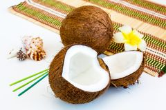 Still life with two parts of ripe Fresh coconut. Whole fruit behind, sea shells,  tropical flower and green aroma sticks Royalty Free Stock Photography