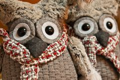 Two owls plush toys with expressive dark eyes Royalty Free Stock Images