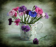 Still life with varicoloured corn-flowers. The bouquet of varicoloured corn-flowers stands in a milkman Stock Photography