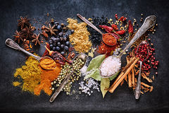 Still life of a variety of dried culinary spices. For Asian and Oriental cuisine with curcuma, star anise, salt, cinnamon, peppercorns, acai, bay leaves, chili stock photography