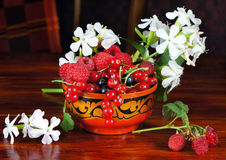 Still life with various berry and flowers Stock Image
