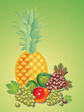 Still life of various fruits. Royalty Free Stock Image