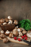 Still life with various vegetables Royalty Free Stock Photography